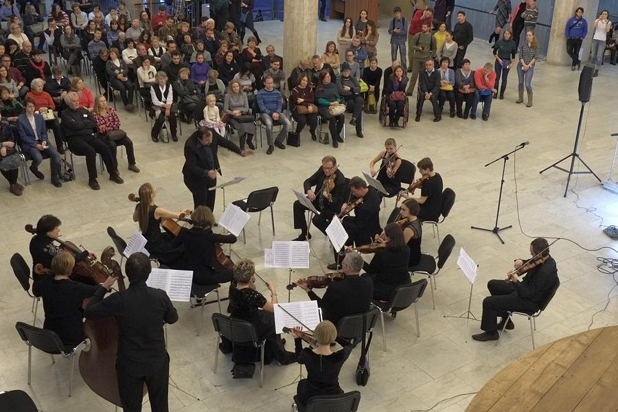 Камерный оркестр заказать
