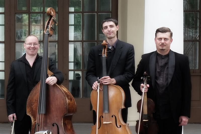 Мужской струнный оркестр
