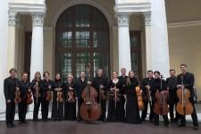 Скрипичный оркестр